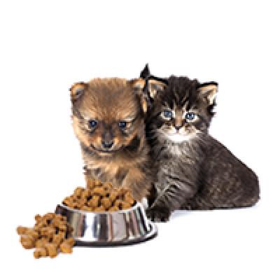Корма для котят и щенков