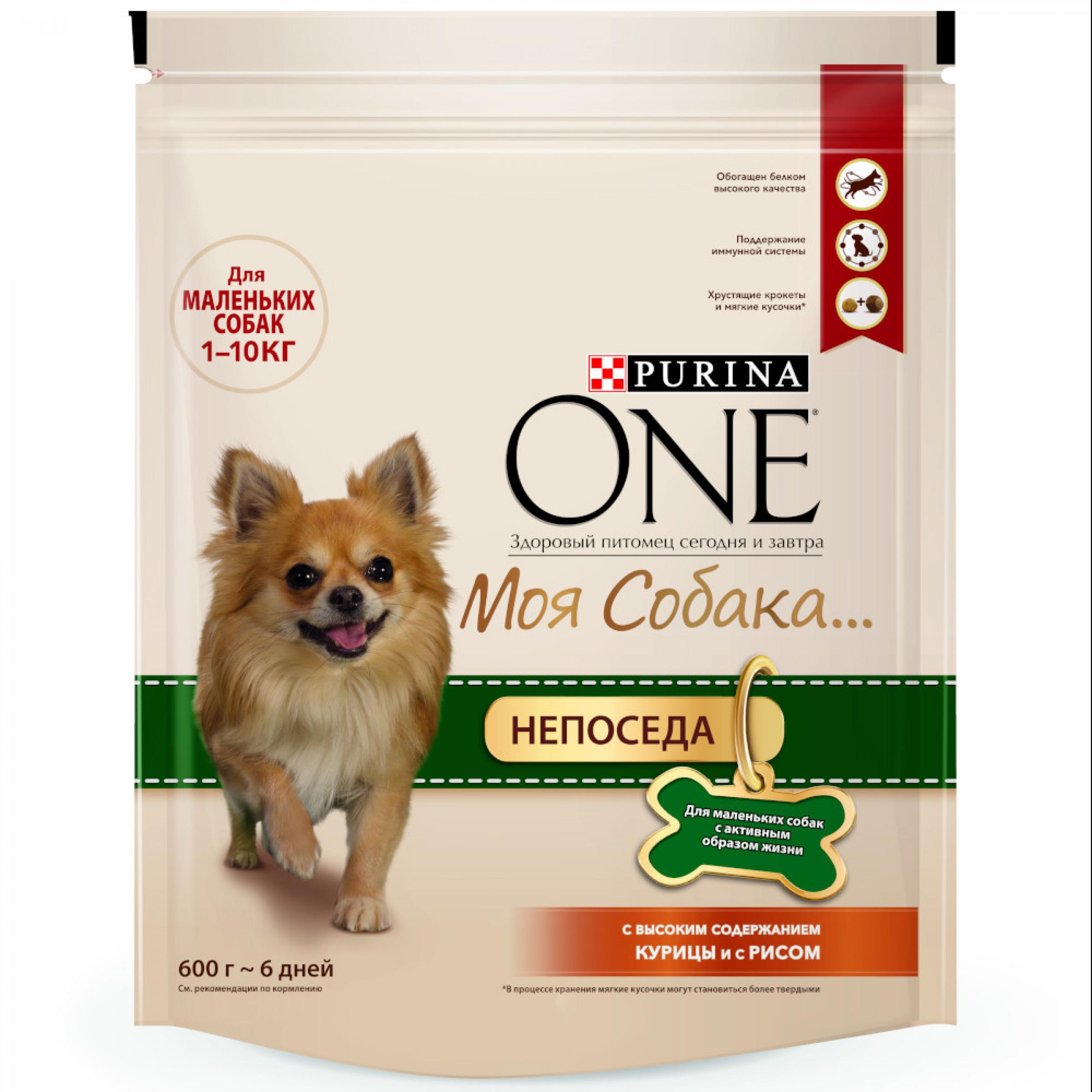 Сухой корм Purina ONE Моя Собака…Непоседа для маленьких собак c активным образом жизни с курицей и рисом, 600 гр
